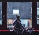 Погода в Туле 16 декабря: дождь, порывистый ветер, до +6 градусов
