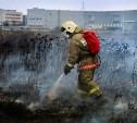 С начала года в Туле и области пожарный надзор поймал 181 поджигателя сухой травы