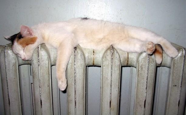 Житель Риги украл старые радиаторы отопления