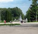 В Центральном парке высадят молодой лес