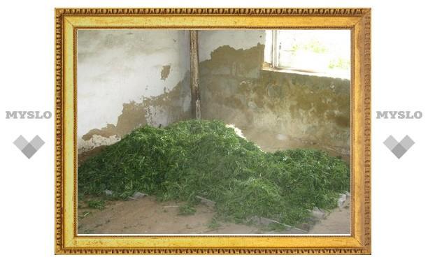Под Тулой обнаружен стог марихуаны