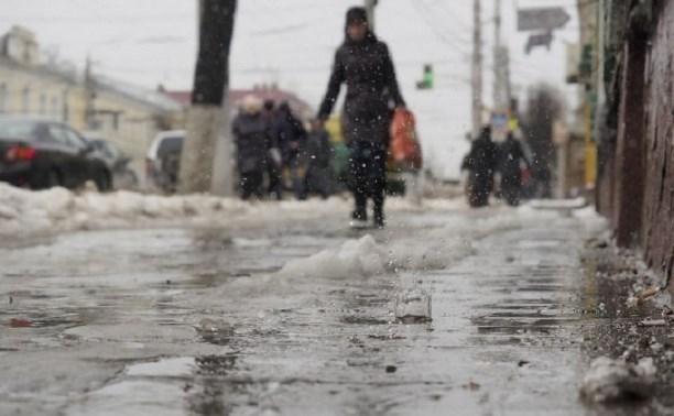 Погода в Туле 25 ноября: небольшой снег и около нуля