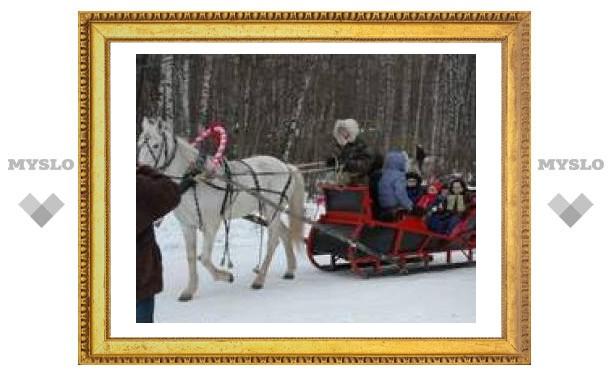 Проведи Рождество в Ясной Поляне