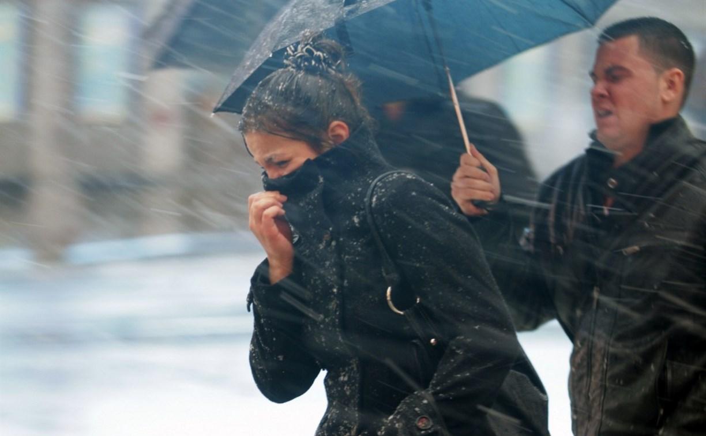 Погода в Туле 31 октября: порывистый ветер, дождь и до +7 градусов