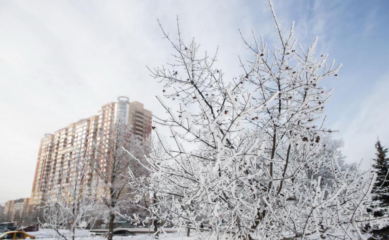 В Центральной России ударят аномальные морозы