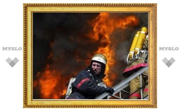 При пожаре под Тулой погиб пенсионер