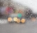 В Туле до конца недели будут идти дожди