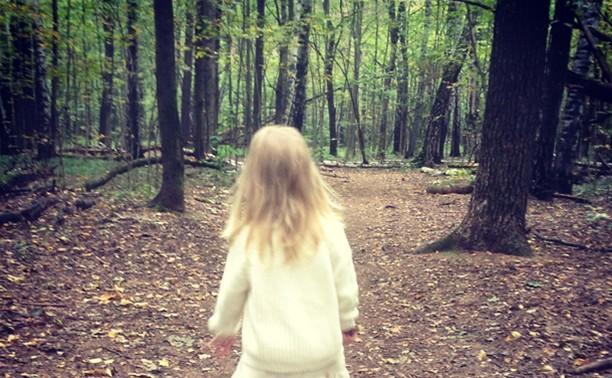 Полиция нашла потерявшуюся в лесу девочку