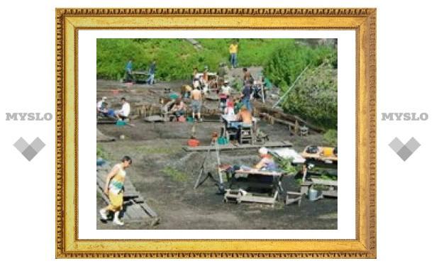 В Новгороде археологи обнаружили неизвестное растение