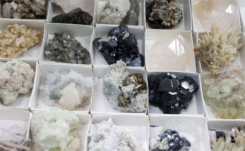 Тульский экзотариум приглашает на выставку минералов