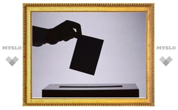 С выборов в Узловой Тульской области удален наблюдатель