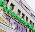 Россельхозбанк запустил акцию «Хорошее начало» для малого и среднего бизнеса