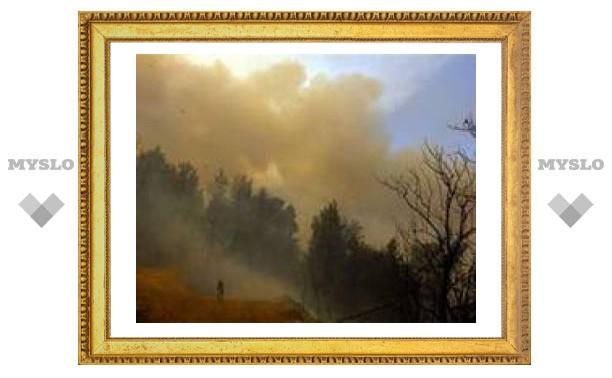 Ущерб от пожаров в Греции оценили в пять миллиардов евро