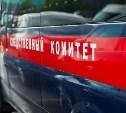 Следователи выясняют причину смерти пятилетней девочки в Ефремове