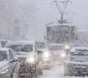Погода в Туле 2 декабря: снегопад и сильный ветер