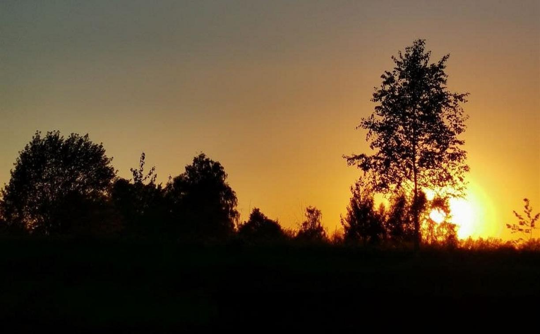 Тульская область на 72 месте в экологическом рейтинге