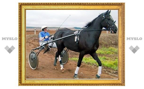 Туляк стал победителем в конном спорте