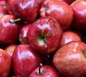 В России запретили ввоз яблок и груш из Белоруссии
