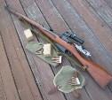 В Суворове мужчину оштрафовали за хранение оружия, доставшегося от умершего отца