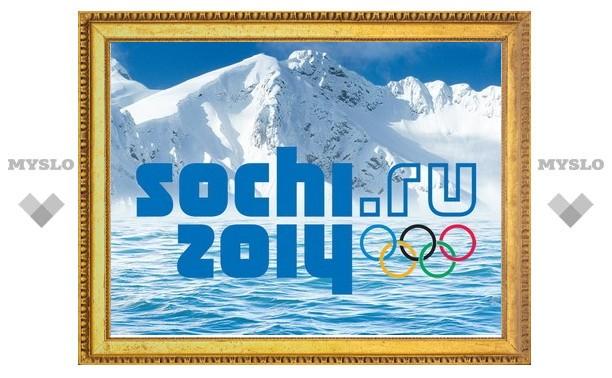 Туляки могут стать волонтерами на Олимпиаде в Сочи