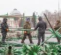В Туле на площади Ленина устанавливают ёлку