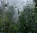 Погода в Туле 25 августа: прохладно, дождливо и ветрено