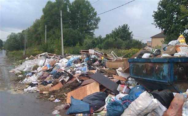 В Туле ликвидировали стихийные свалки