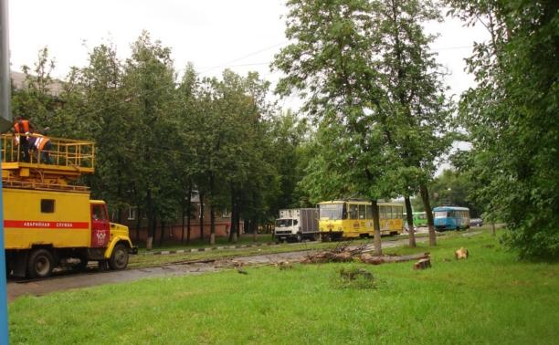 В Криволучье из-за урагана на трамвайные пути упало дерево