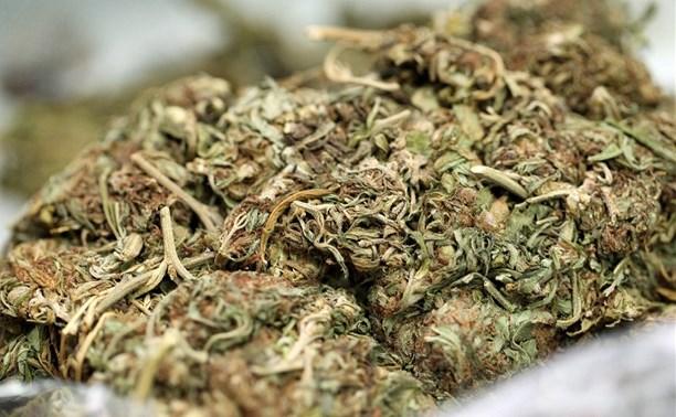 Туляк предстанет перед судом за хранение 719 граммов марихуаны