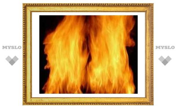 В Тульской области заживо сгорел человек