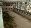Какие тульские спортшколы и бассейны реконструируют в 2015 году