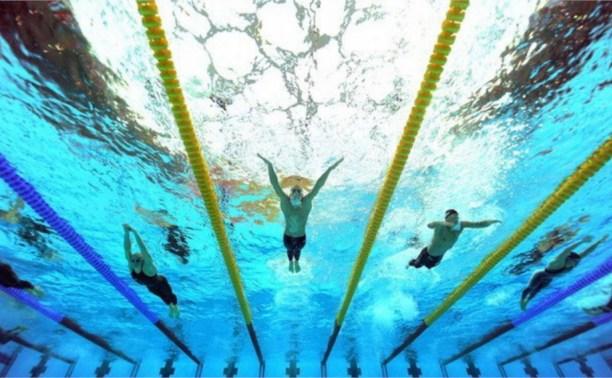 Тульские пловцы привезли семь медалей с первенства ЦФО