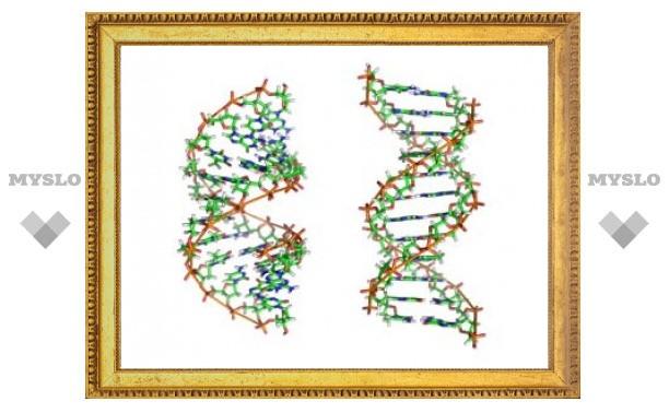 МВД создаст базу ДНК опасных преступников