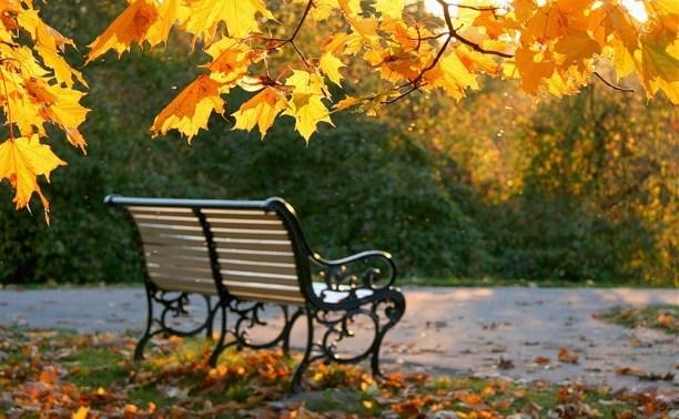 Погода в Туле 18 октября: облачно, сухо и до +17 градусов