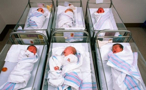 В Тульской области выросла рождаемость и снизилась смертность