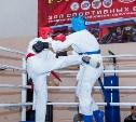 В Тульской области пройдет открытый турнир по смешанным единоборствам