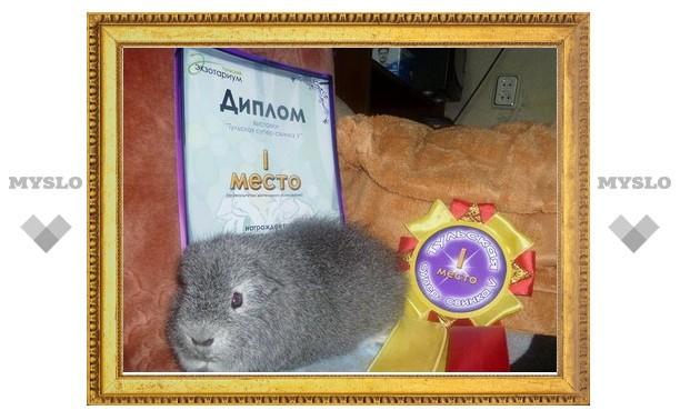 В Туле выберут супер свинку-2011