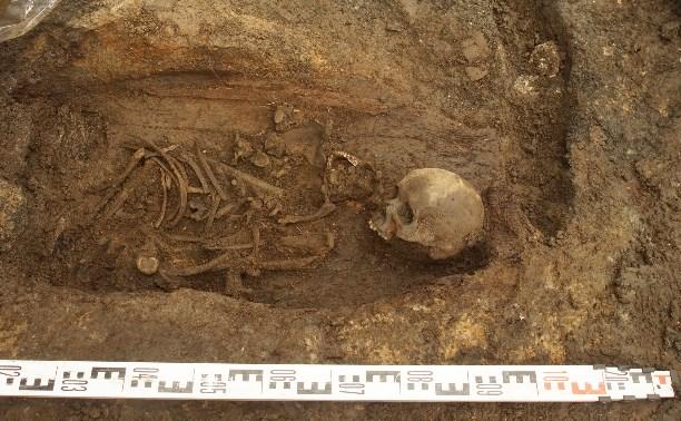 Раскопки на улице Металлистов: По черепам воссоздадут внешность туляков XVIII века
