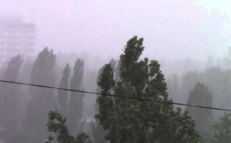 В Тульской области ожидаются ливень и сильный ветер