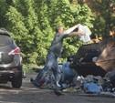 Почему Тула тонет в мусоре?