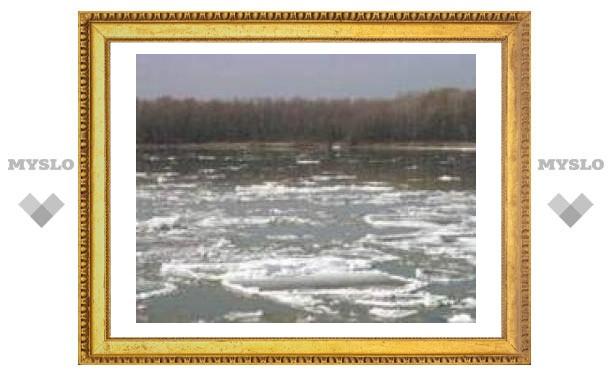 В Тульской области затопило четыре моста