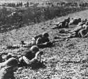 Разыскиваются родственники туляков – участников Второй мировой войны