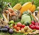 Жителей Тульской области приглашают на праздник урожая