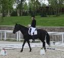 В Туле прошли конные соревнования для лиц с ограниченными возможностями здоровья