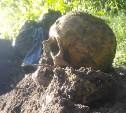 В Тульской области обнаружили немецкое захоронение