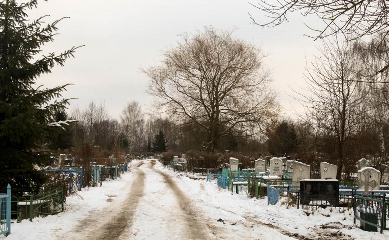 Кто устроил бардак на тульском кладбище: вандалы или воры? Фоторепортаж