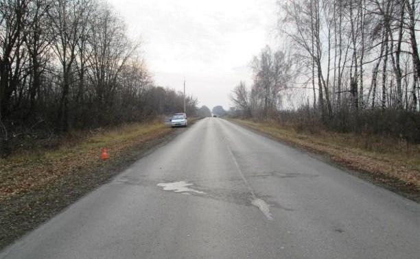В Ефремовском районе водитель сбил идущего вдоль дороги пешехода