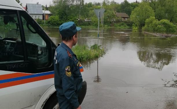 В Тульской области река Веневка вышла из берегов и подтопила мост