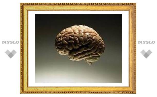При рутинной работе мозг за полминуты готовится к «отключению»
