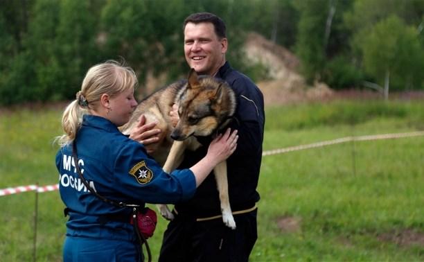 Собаки-спасатели посоревновались в ловкости и послушании